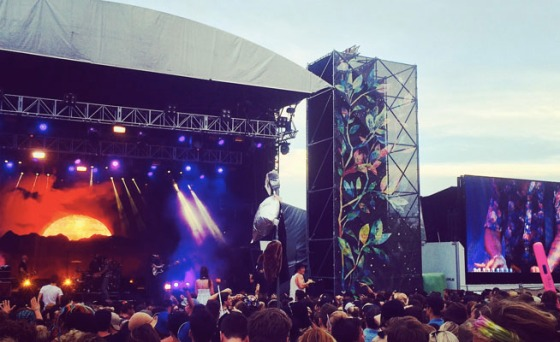 Falls Festival 201415
